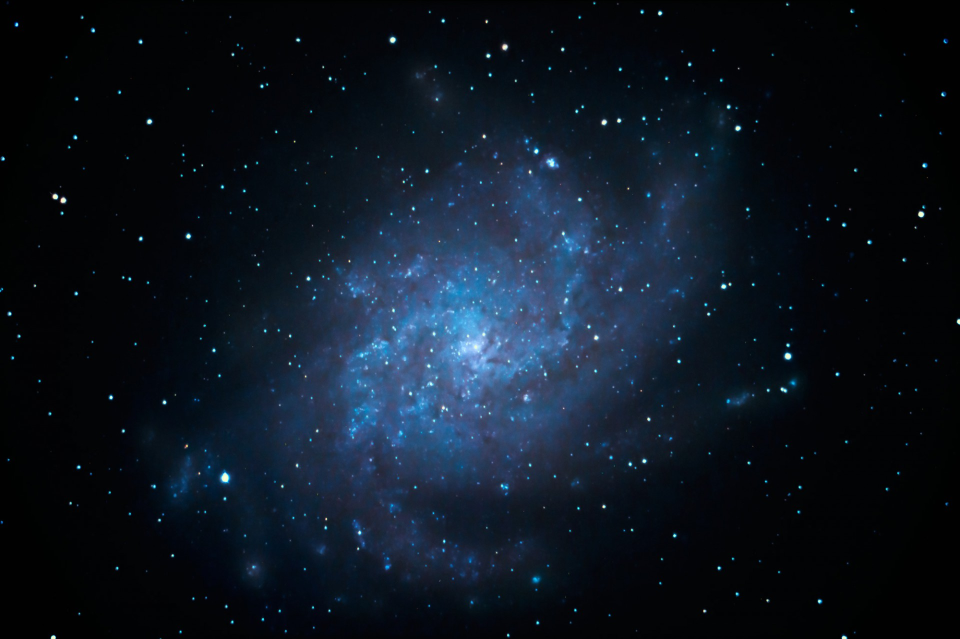 Triangulum Galaxy (M 33)